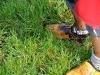 verrassingsrit_094_11-09-2011